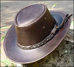 Brown Stirling Hat